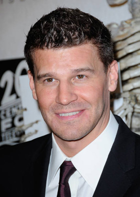 David Boreanaz Sued for Sexual Harassment
