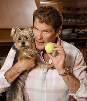 David Hasselhoff, The Hasselhoffs, canceled, pictures, picture, photos, photo, pics, pic, images, image, hot, sexy, latest, new, 2010
