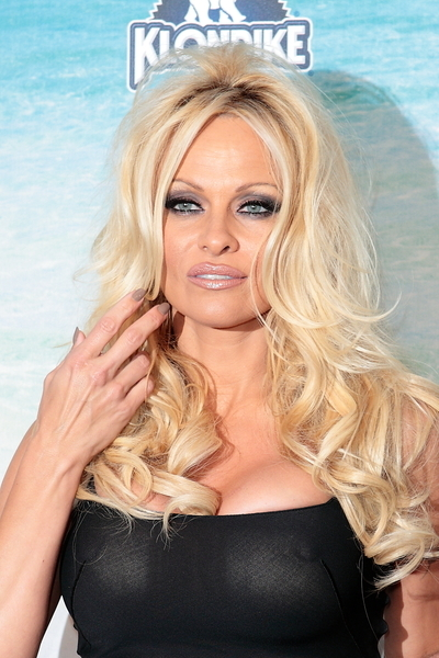 Congratulate, brilliant Pamela anderson see through join. And