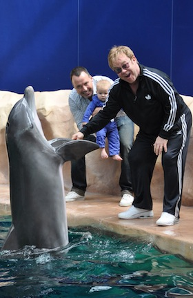 Elton John, David Furnish, son, Zachary, pictures, picture, photos, photo, pics, pic, images, image, hot, sexy, latest, new, 2011
